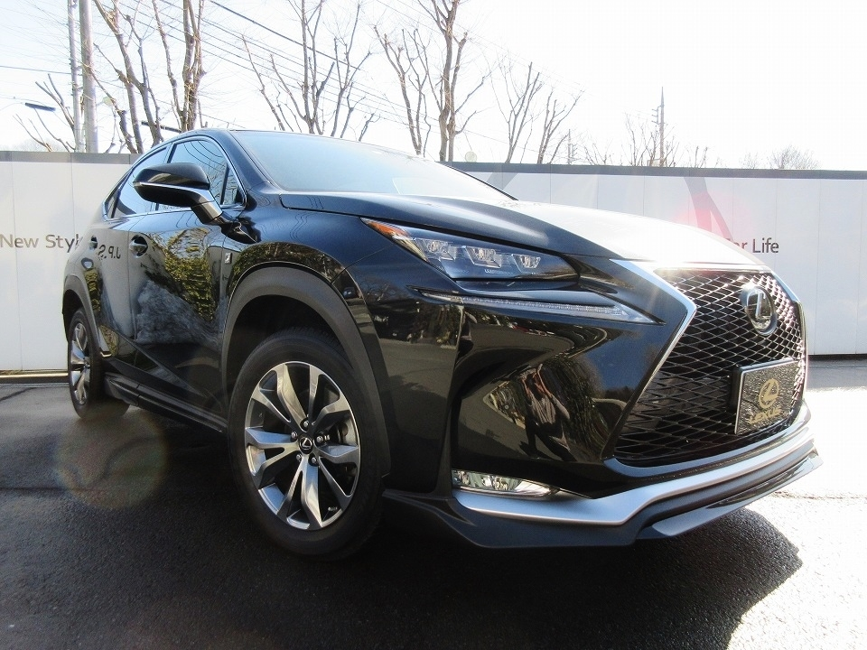 Buy used LEXUS NX at Japanese auctions